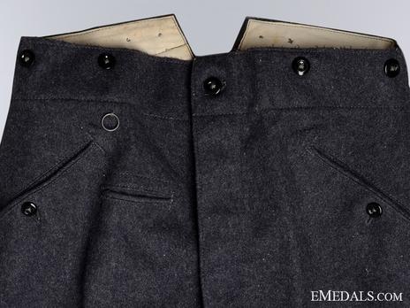 Luftwaffe NCO/EM Ranks Long Trousers Obverse