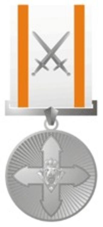 Silver medal 1991 with swords1