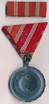 Medal of Labour (1954-1963) Reverse