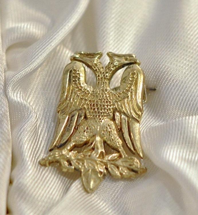 Gold eagle2