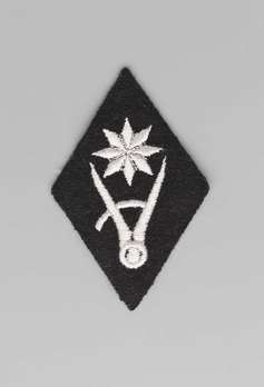 Waffen-SS WVHA (Construction Group) Trade Insignia Obverse